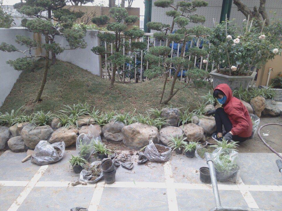 Công trình sân vườn nhà anh Quân-khu đô thị Việt Hưng