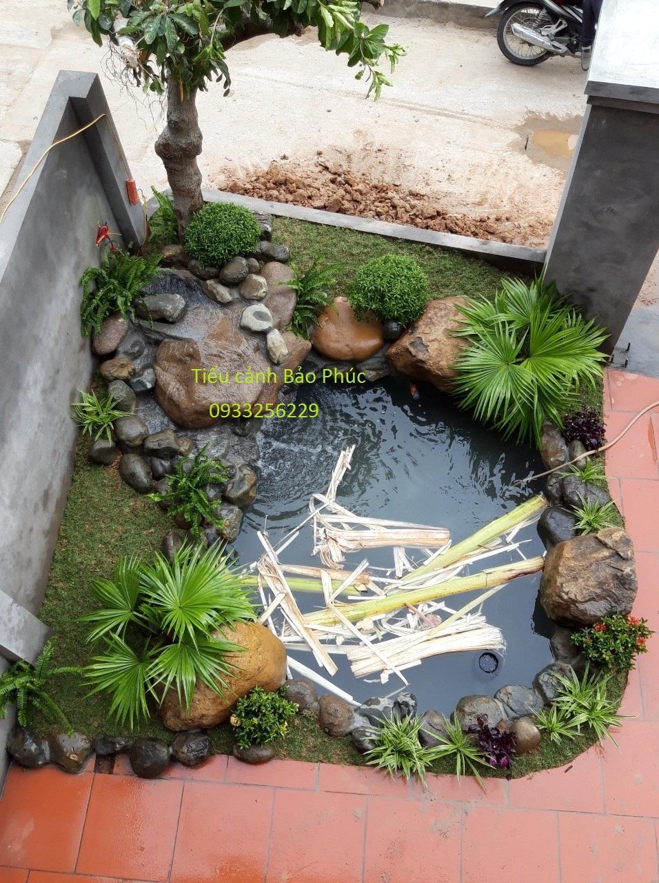Công trình hồ cá Koi tại Đông Anh- Hà Nội