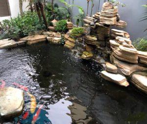 Hồ cá Koi đẹp tại Vincom Long Biên
